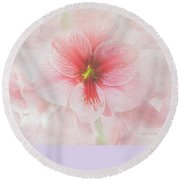 Round Beach Towel featuring the photograph Amaryllis 'purple Rain' by Ann Jacobson
