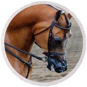 Arabian Show Horse Round Beach Towel
