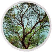 Arbutus Tree Round Beach Towel by Sabine Edrissi