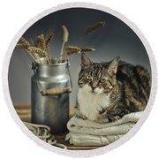 Cat Portrait Round Beach Towel