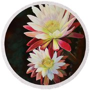 Round Beach Towel featuring the painting Cereus Business by Marilyn Smith