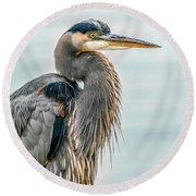 Chesapeake Bay Great Blue Heron Round Beach Towel
