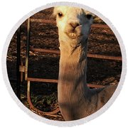 Cria Round Beach Towel