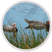 Round Beach Towel featuring the photograph 2- Ducks by Joseph Keane
