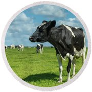 Dutch Cow Round Beach Towel