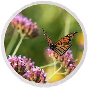 Flight Of The Monarch 1 Round Beach Towel
