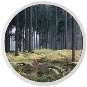 Fog In The Forest With Ferns Round Beach Towel by Michal Boubin