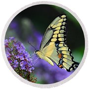 Round Beach Towel featuring the photograph Giant Swallowtail by Rodney Campbell