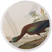 Glossy Ibis Round Beach Towel by John James Audubon