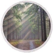 God Beams - Coniferous Forest In Fog Round Beach Towel by Michal Boubin