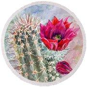 Hedgehog Cactus Round Beach Towel by Marilyn Smith