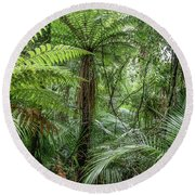 Round Beach Towel featuring the photograph Jungle Ferns by Les Cunliffe