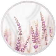 Lavender Flower In The Garden,park,backyard,meadow Blossom In Th Round Beach Towel by Jingjits Photography