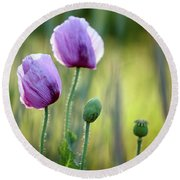Lilac Poppy Flowers Round Beach Towel