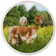 Round Beach Towel featuring the photograph 2 Little Llamas by Mary Timman