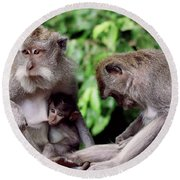 Long Tailed Macaques  Round Beach Towel by Cassandra Buckley