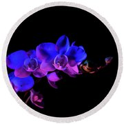 Orchid Round Beach Towel by Brian Jones