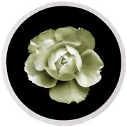 Round Beach Towel featuring the photograph Peony by Charles Harden