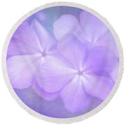 Phlox In The Evening Light Round Beach Towel