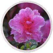 Pink Rhododendron 4 Round Beach Towel