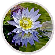 Purple Water Lily Pond Round Beach Towel by Carol F Austin