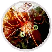 Red Night Shrimp Round Beach Towel by Amy McDaniel
