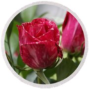 Round Beach Towel featuring the photograph Rose by Heidi Poulin