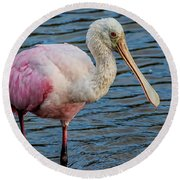 Roseate Spoonbill 1 Round Beach Towel