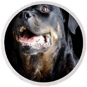 Rottweiler Dog Round Beach Towel