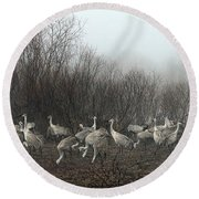 Sandhill Cranes And The Fog Round Beach Towel