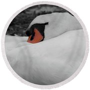 Round Beach Towel featuring the photograph Sleeping Beauty by Scott Carruthers