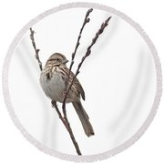 Song Sparrow Round Beach Towel