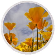 Springtime Poppies  Round Beach Towel