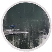 Round Beach Towel featuring the photograph Stalker  by Skip Willits