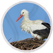 Round Beach Towel featuring the photograph Stork On A Nest by Nick Biemans