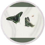 Studies Of Two Butterflies Round Beach Towel by Anton Henstenburgh