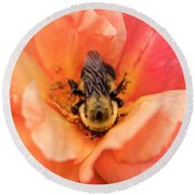 Round Beach Towel featuring the photograph The Bee by Cathy Donohoue