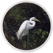 The Great White Egret Round Beach Towel