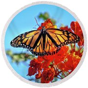 The Resting Monarch Round Beach Towel by Robert Bales