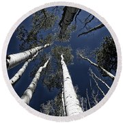 Towering Aspens Round Beach Towel