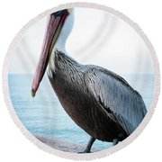 Portrait Of A Pelican Round Beach Towel