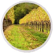 Vineyard In The Fall Round Beach Towel