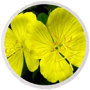 Round Beach Towel featuring the photograph Yellow Flowers by Stephanie Moore
