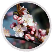 Tree Blossoms Round Beach Towel by Elvira Ladocki