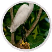 Round Beach Towel featuring the photograph White Egret by Christopher Holmes