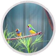 Aussie Rainbow Lovebirds Round Beach Towel