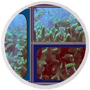 2015 Periscope Perspective Gallery Underwater Coral Reef Vegitation Photography In Landscape Format Round Beach Towel