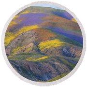 2017 Carrizo Plain Super Bloom Round Beach Towel