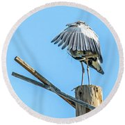 Great Blue Heron Round Beach Towel by Tam Ryan