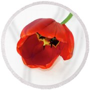 Red Tulip Round Beach Towel by Elvira Ladocki